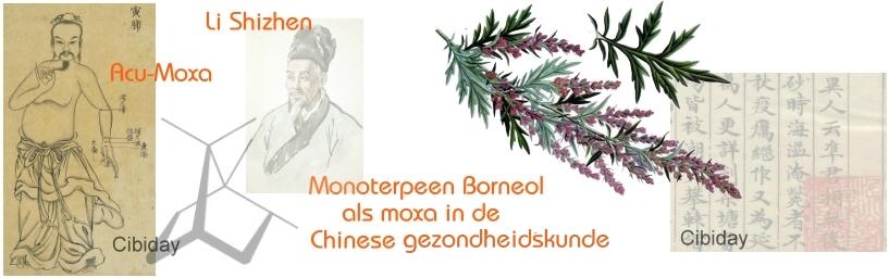 Borneol moxa bijvoet