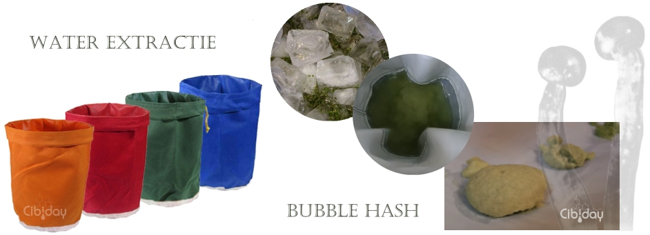 Bubble Hash Water Extractie