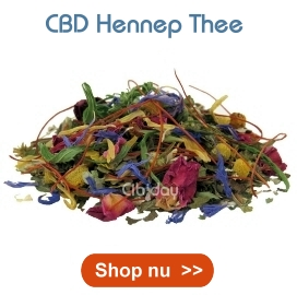 CBD Hennep Thee Cibiday