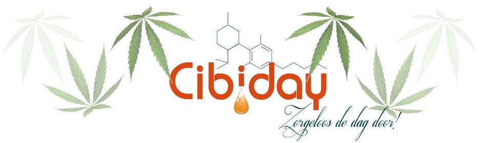 Cibiday Naam Slogan