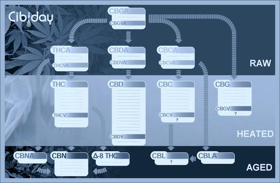 Fytocannabinoiden Profielen