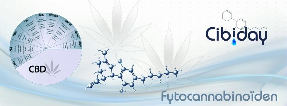 Fytocannabinoiden
