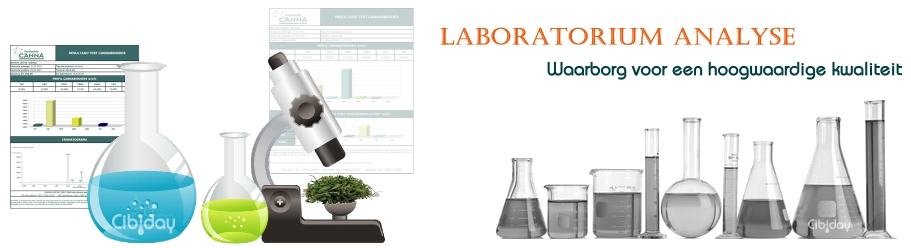 Laboratoriumanalyse
