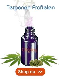 Terpeenprofielen Cannabis